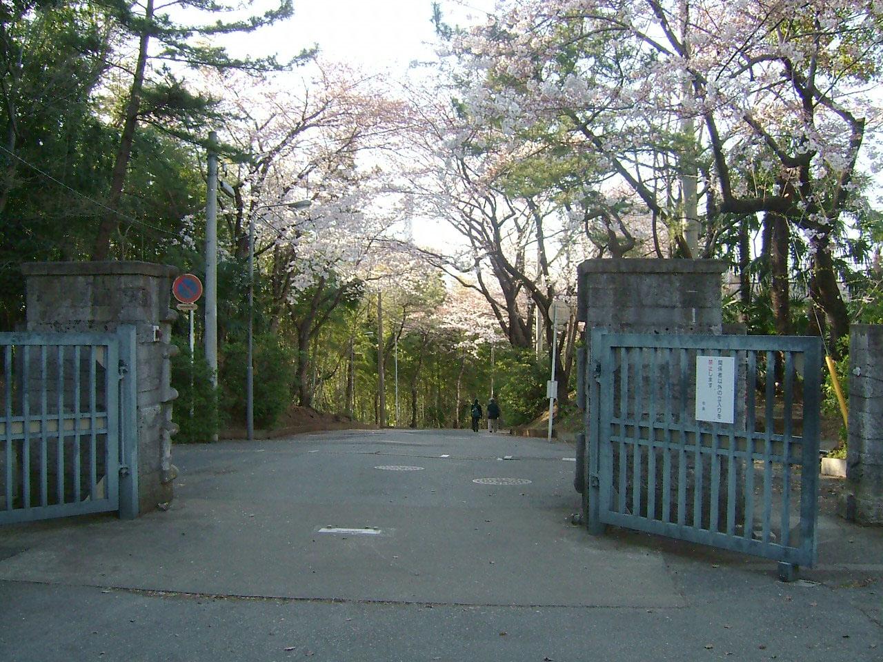 校門をから坂道を見る